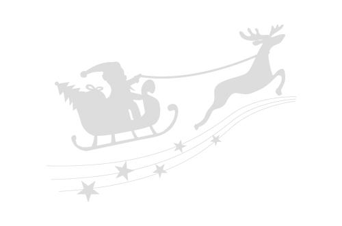 クリスマス特集 配送日指定可・全品送料無料